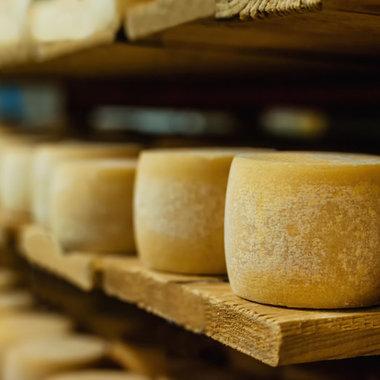 Spécialiste de l'affinage de fromage