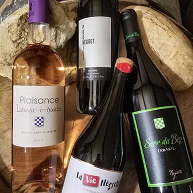 Dégustation des vins du Château Plaisance