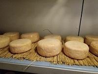 Fromagerie Jeannot, vente de fromages à Colomiers