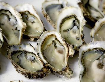 Le Samedi les huîtres sont au rendez vous